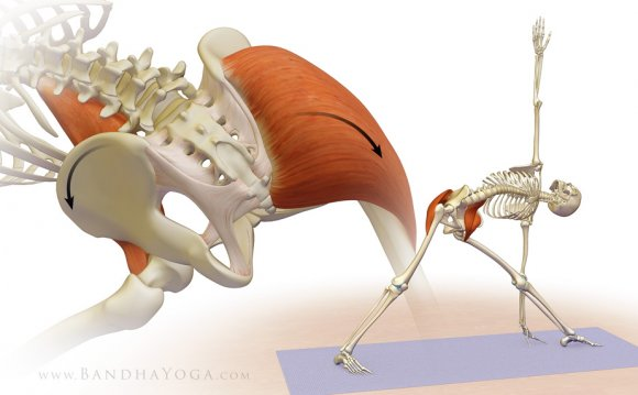 Psoas Stretch Yoga Virginia