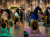 Altamonte Yoga Schedule Virginia