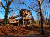 Tree House Yoga Virginia