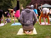 Yoga Rocks the Park Virginia