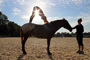 Yoga on Horseback at Salamander Resort
